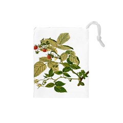 Berries Berry Food Fruit Herbal Drawstring Pouches (small)  by Nexatart