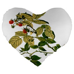 Berries Berry Food Fruit Herbal Large 19  Premium Flano Heart Shape Cushions by Nexatart