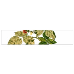 Berries Berry Food Fruit Herbal Flano Scarf (small) by Nexatart