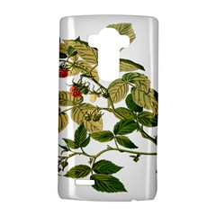 Berries Berry Food Fruit Herbal Lg G4 Hardshell Case