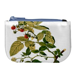 Berries Berry Food Fruit Herbal Large Coin Purse by Nexatart