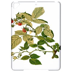 Berries Berry Food Fruit Herbal Apple Ipad Pro 9 7   Hardshell Case