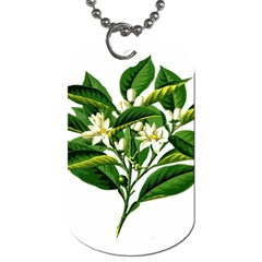 Bitter Branch Citrus Edible Floral Dog Tag (one Side)