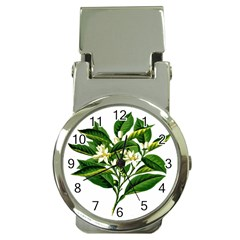 Bitter Branch Citrus Edible Floral Money Clip Watches by Nexatart