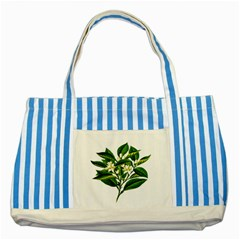 Bitter Branch Citrus Edible Floral Striped Blue Tote Bag