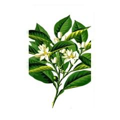 Bitter Branch Citrus Edible Floral Memory Card Reader