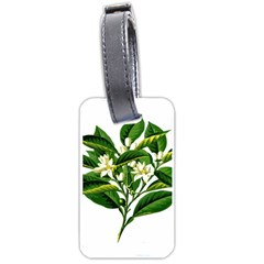 Bitter Branch Citrus Edible Floral Luggage Tags (one Side)