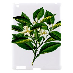Bitter Branch Citrus Edible Floral Apple Ipad 3/4 Hardshell Case (compatible With Smart Cover) by Nexatart