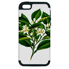 Bitter Branch Citrus Edible Floral Apple Iphone 5 Hardshell Case (pc+silicone) by Nexatart