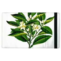 Bitter Branch Citrus Edible Floral Apple Ipad 3/4 Flip Case