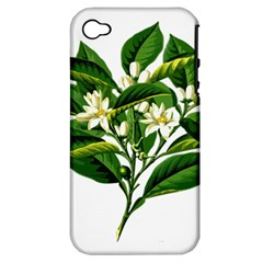 Bitter Branch Citrus Edible Floral Apple Iphone 4/4s Hardshell Case (pc+silicone)