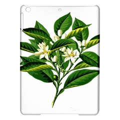 Bitter Branch Citrus Edible Floral Ipad Air Hardshell Cases