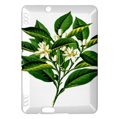 Bitter Branch Citrus Edible Floral Kindle Fire Hdx Hardshell Case by Nexatart