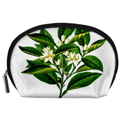 Bitter Branch Citrus Edible Floral Accessory Pouches (large)  by Nexatart