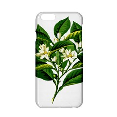 Bitter Branch Citrus Edible Floral Apple Iphone 6/6s Hardshell Case