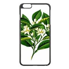 Bitter Branch Citrus Edible Floral Apple Iphone 6 Plus/6s Plus Black Enamel Case by Nexatart