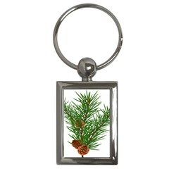 Branch Floral Green Nature Pine Key Chains (rectangle)  by Nexatart
