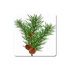 Branch Floral Green Nature Pine Square Magnet