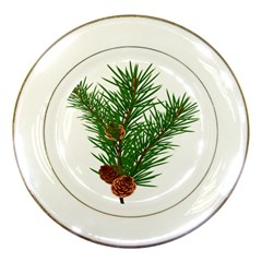 Branch Floral Green Nature Pine Porcelain Plates by Nexatart