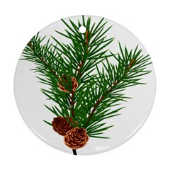 Branch Floral Green Nature Pine Round Ornament (two Sides) by Nexatart