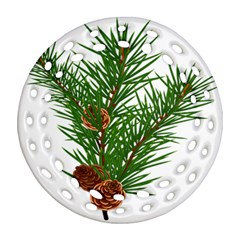 Branch Floral Green Nature Pine Round Filigree Ornament (two Sides) by Nexatart