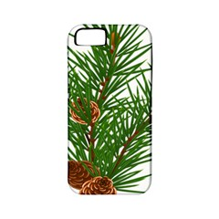 Branch Floral Green Nature Pine Apple Iphone 5 Classic Hardshell Case (pc+silicone) by Nexatart