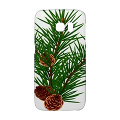 Branch Floral Green Nature Pine Galaxy S6 Edge by Nexatart