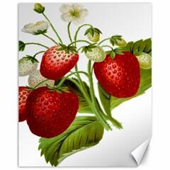 Food Fruit Leaf Leafy Leaves Canvas 11  X 14