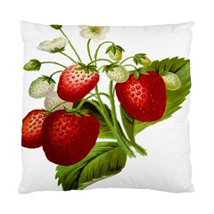 Food Fruit Leaf Leafy Leaves Standard Cushion Case (two Sides) by Nexatart