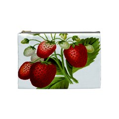 Food Fruit Leaf Leafy Leaves Cosmetic Bag (medium)  by Nexatart