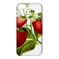 Food Fruit Leaf Leafy Leaves Apple Iphone 5c Hardshell Case