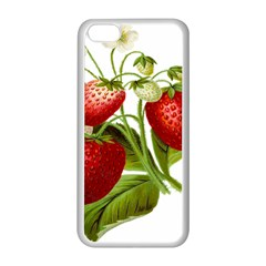 Food Fruit Leaf Leafy Leaves Apple Iphone 5c Seamless Case (white) by Nexatart