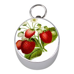 Food Fruit Leaf Leafy Leaves Mini Silver Compasses by Nexatart