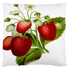 Food Fruit Leaf Leafy Leaves Standard Flano Cushion Case (two Sides)