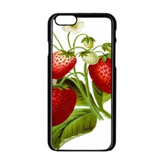 Food Fruit Leaf Leafy Leaves Apple Iphone 6/6s Black Enamel Case