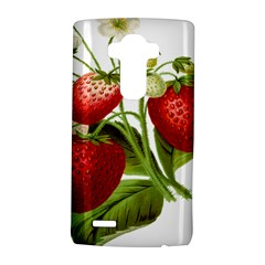 Food Fruit Leaf Leafy Leaves Lg G4 Hardshell Case by Nexatart