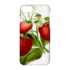Food Fruit Leaf Leafy Leaves Apple Iphone 7 Hardshell Case