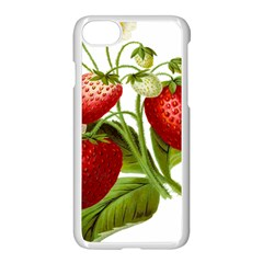 Food Fruit Leaf Leafy Leaves Apple Iphone 7 Seamless Case (white) by Nexatart