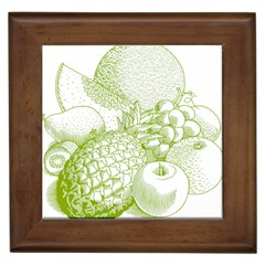 Fruits Vintage Food Healthy Retro Framed Tiles