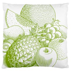 Fruits Vintage Food Healthy Retro Large Cushion Case (two Sides)