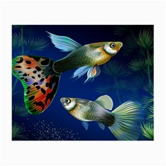 Marine Fishes Small Glasses Cloth