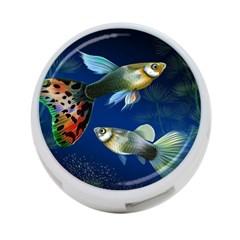 Marine Fishes 4 Port Usb Hub (one Side) by BangZart