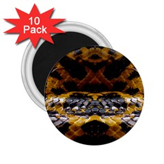 Textures Snake Skin Patterns 2 25  Magnets (10 Pack)