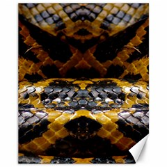 Textures Snake Skin Patterns Canvas 11  X 14