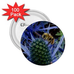 Chihuly Garden Bumble 2 25  Buttons (100 Pack)