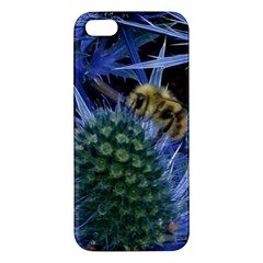 Chihuly Garden Bumble Apple Iphone 5 Premium Hardshell Case by BangZart
