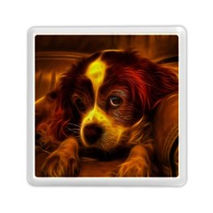 Cute 3d Dog Memory Card Reader (square)
