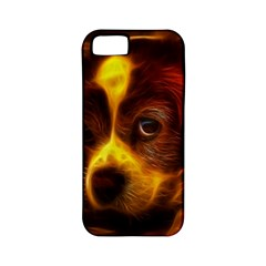 Cute 3d Dog Apple Iphone 5 Classic Hardshell Case (pc+silicone) by BangZart