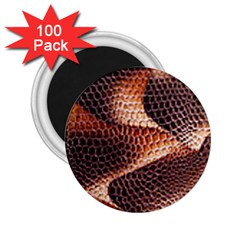 Snake Python Skin Pattern 2 25  Magnets (100 Pack)  by BangZart