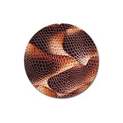 Snake Python Skin Pattern Magnet 3  (round) by BangZart